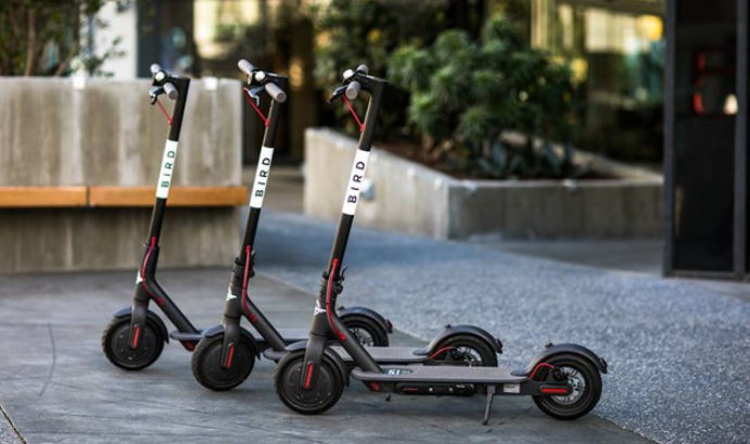 Electric Scooters Are Capturing The Worldwide Market